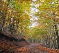 Equinozio d'autunno al Sasso Balinello